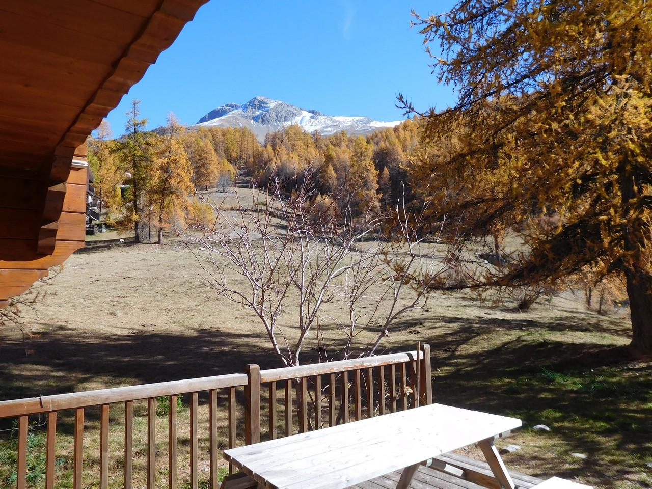 Aconit et sa terrasse en automne